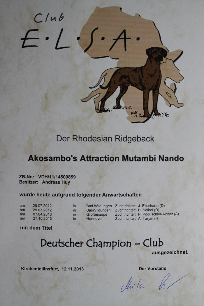 Deutscher Champion Club 2013