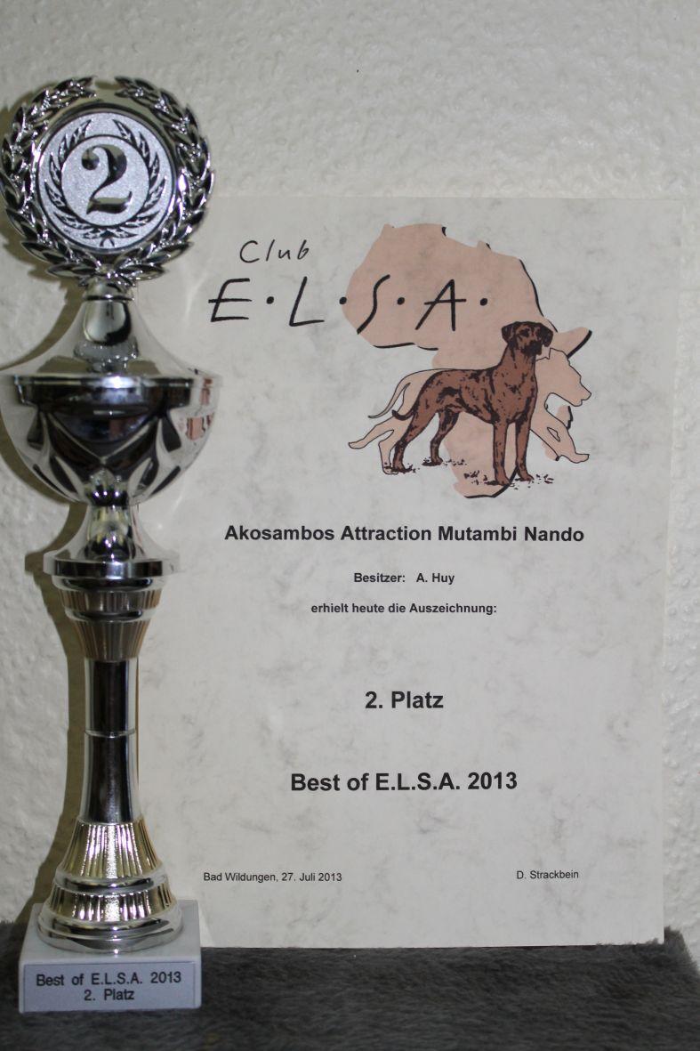 für HP Best of Elsa web1