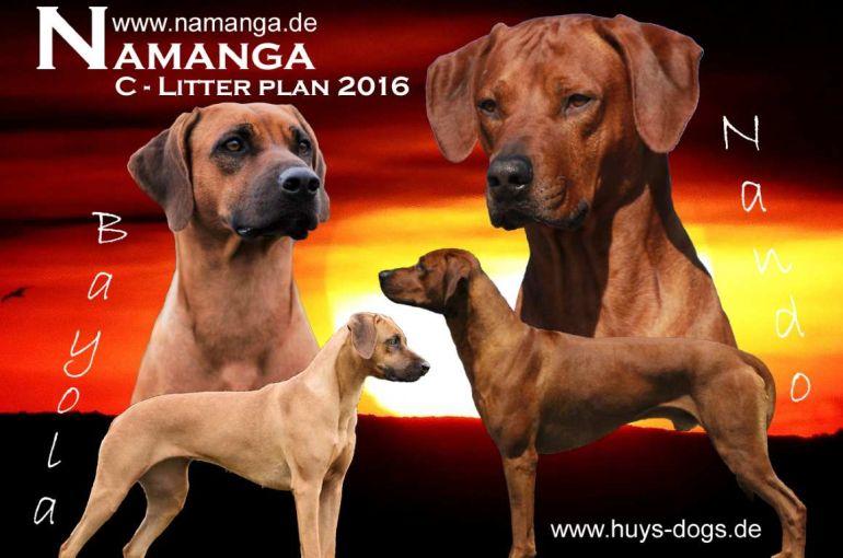 20151010 Nando Bayola für Homepage News verkleinert